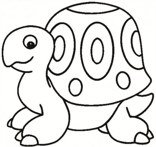 desene de colorat - broasca testoasa 4