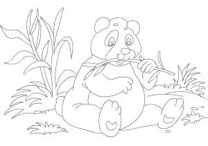 desene de colorat - panda 4