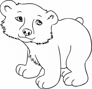 desene de colorat - ursul 4