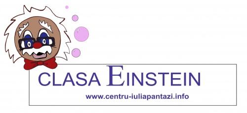 logo_-_einstein_width