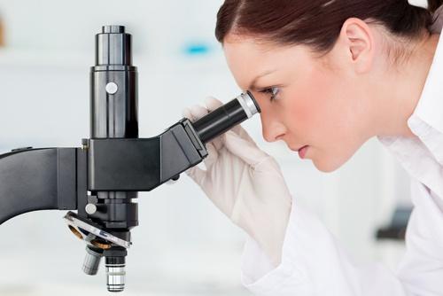 Teste in sarcina