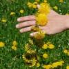 Poezie pentru sarbatoarea Floriilor