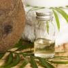 Secretele uleiului de cocos