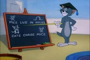 Tom, profesor de pisici
