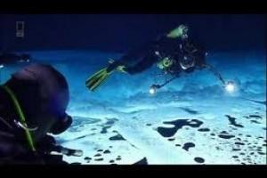 Lumea subacvatica. Frumuseti nebanuite
