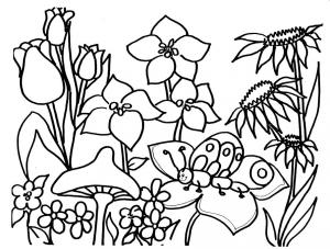 plansa-colorat-copii-flori-de-primavara