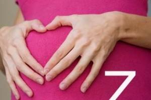 Termeni medicali in sarcina - litera Z