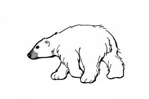 Desene de colorat | Ursuletii