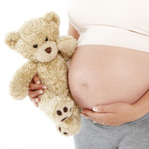 gravida