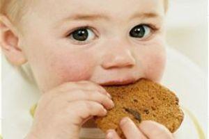 Retete pentru primii biscuiti ai copilului