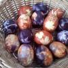 Vopsea naturala pentru ouale de Pasti