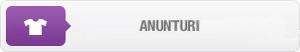 btn_anunturi